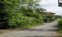 Image 3 from Land for sale leasehold in Kertalangu