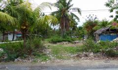 Image 2 from Tanah Dikontrakkan di Nusa Lembongan