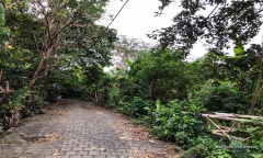 Image 1 from Land for Sale Leasehold in Pererenan