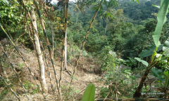 Image 1 from Land for Sale Leasehold in Tampaksiring, Ubud