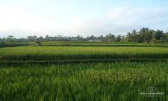Image 1 from Terrain à vendre Tenure à bail à Tegalalang, Ubud
