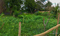Image 1 from Land For Sale Leasehold in Umalas