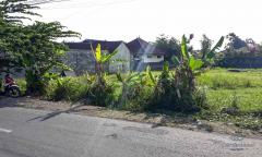 Image 2 from Land For Sale Leasehold Perfectly Located in Bumbak - Umalas