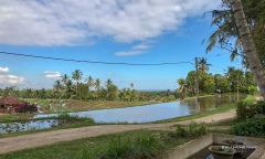 Image 1 from Land & Restaurant For Sale Freehold in Tabanan