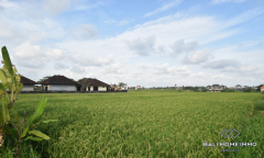 Image 1 from Land with Ricefield View  for Sale Freehold near Cemagi Beach