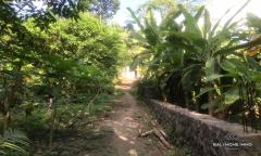 Image 3 from Tanah dengan Pemandangan Sungai dijual di Umalas