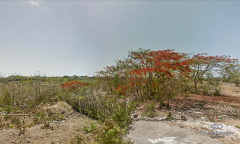 Image 1 from Ocean view land for sale freehold at uluwatu in bukit area