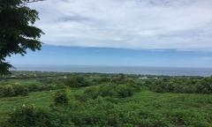 Image 3 from Terrain vue mer à vendre en pleine propriété à Lovina