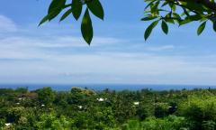 Image 1 from Terrain vue mer à vendre en pleine propriété à Lovina