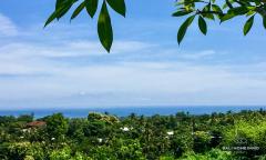 Image 1 from Terrain vue ocean à vendre en pleine propriété à Lovina