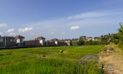 Image 1 from Ricefield View Land For Sale 220m From Cemagi Beach