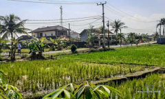 Image 3 from Ricefield View Land For Sale 220m From Cemagi Beach