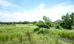Image 3 from Tanah dengan pemandangan sawah dijual hak milik di Canggu - Berawa