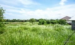 Image 2 from Tanah dengan pemandangan sawah dijual hak milik di Canggu - Berawa