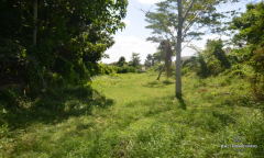 Image 1 from Ricefield view land for sale freehold in Canggu - Pererenan