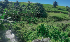 Image 1 from Ricefield View Land For Sale Freehold in Mengwi