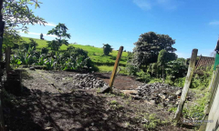 Image 3 from Ricefield View Land For Sale Freehold in Mengwi