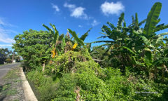 Image 3 from Ricefield View Land For Sale Freehold Near Cemagi Beach