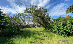 Image 1 from Ricefield View Land For Sale Freehold Near Cemagi Beach