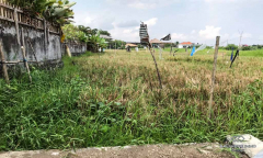 Image 3 from Ricefield View Land For Sale in Batu Bolong