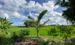 Image 3 from Ricefield View Land For Sale Leasehold in Canggu - Residential Side