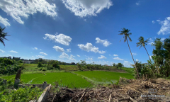 Image 1 from Ricefield View Land For Sale Leasehold in Canggu