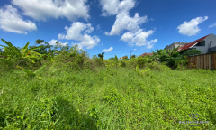 Image 3 from Ricefield View Land For Sale Leasehold in Canggu