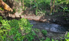 Image 2 from Riverside Land For Sale Leasehold in Pererenan