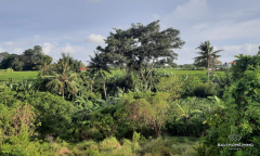 Image 1 from Riverside Land For Sale Leasehold in Pererenan